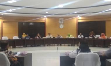 Komisi IV Dorong RS Memanfaatkan Program SCF