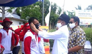 Tenaga Ahli Wakil Ketua DPR-RI DR. Rustam Hs. Akili Hadiri Panen Raya Holltkultura