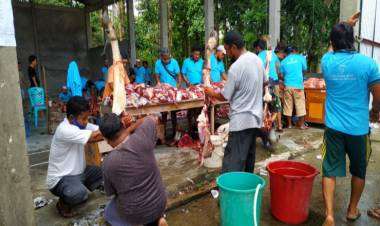 Idul Adha Tahun 2020 , Umat Muslim di Talaud Kurbankan 18 Ekor Sapi dan 7 Ekor Kambing