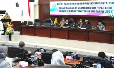 Wagub Gorontalo : Pendapatan PAD 2021 Bakal Terjadi Penurunan Rp 30,54 Miliar