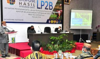 Tiga Ribu Hektar Lahan Sawah Gorontalo Beralih Fungsi
