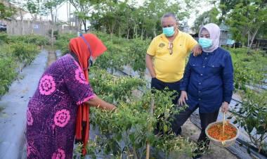 Gubernur Gorontalo Terus Menggerakan Masyarakat Dalam Memberdayakan Pekarangan