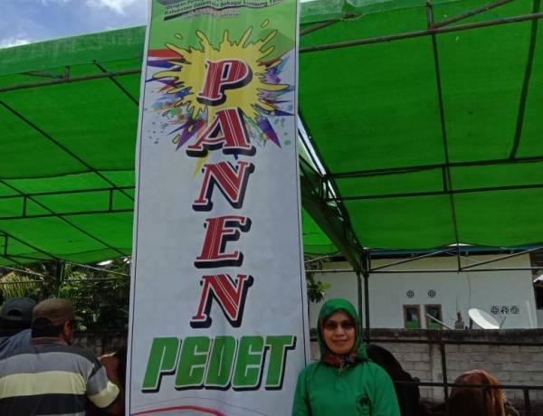 Peternakan Kabupaten Gorontalo Lakukan Panen Pedet 2018