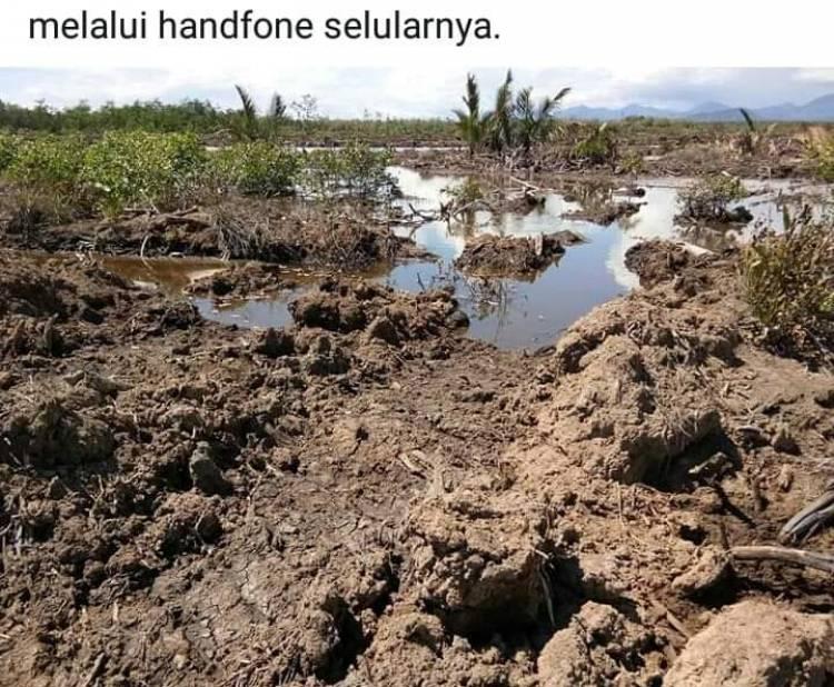Benarkah Hutan Lindung Tanjung Panjang Pohuwato Terus Di Lakukan Pembabatan?
