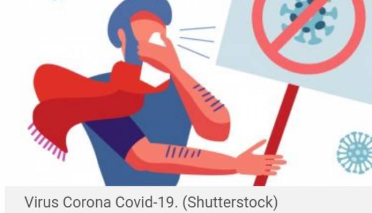 Ilmuan Australia Mengklaim Berhasil Mengidentifikasi Bagaimana Sistem Kekebalan Tubuh Memerangi Virus  CronaCovid-19