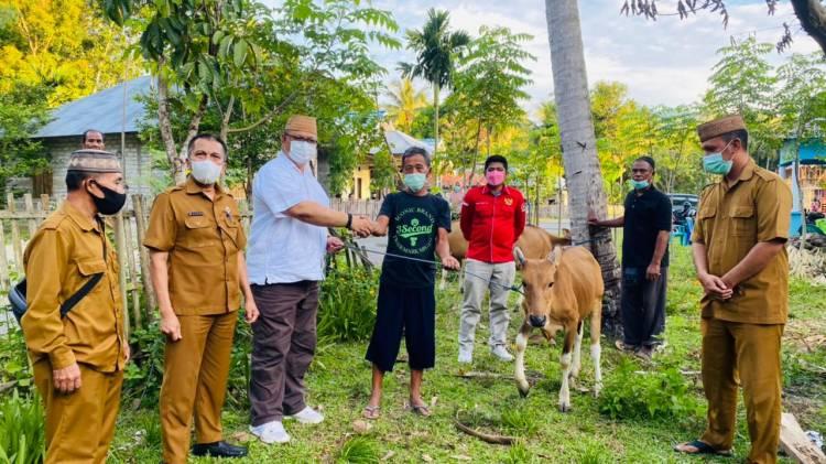 Kris Wartabone Serahkan Bantuan 12 Ekor Sapi di Bone Bolango